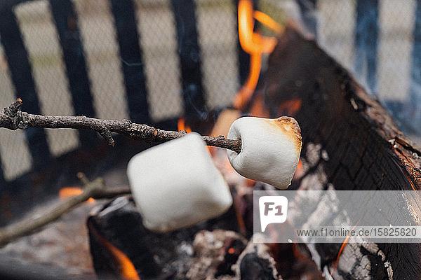 Marshmallows über dem Feuer rösten