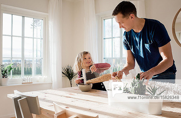 der Vater hilft seiner Tochter  ihr morgens zu Hause das Frühstück zu machen