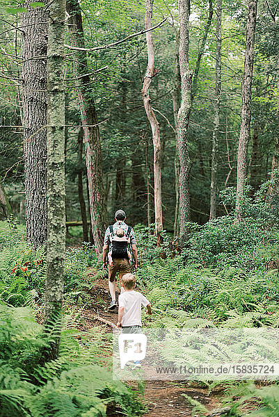 Eine junge Familie und ihr Hund auf einem Spaziergang in der Natur.