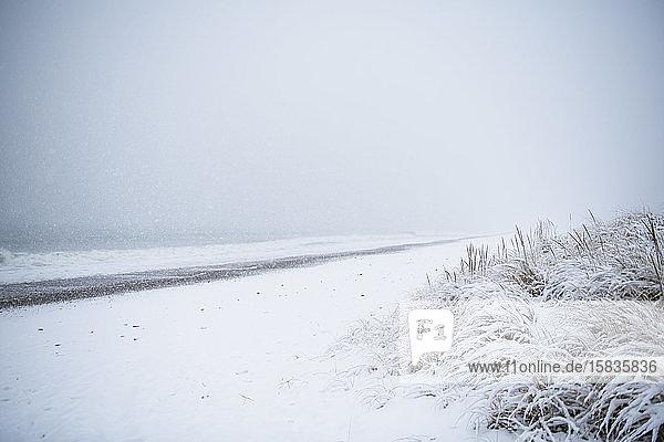Im Winter schneebedeckter Strand
