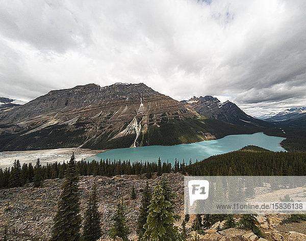 Panoramablick auf den türkisfarbenen Peyto Lake in den kanadischen Rocky Mountains.