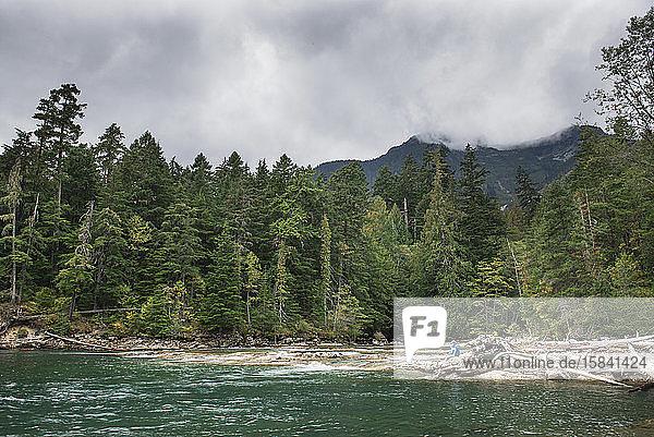 Weitwinkelaufnahme eines Mannes und eines Kindes  die auf Baumstämmen sitzen und an einem See fischen