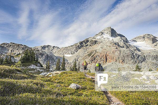 Rückansicht von Bergsteigern  die sich über eine Almwiese dem Berg nähern.