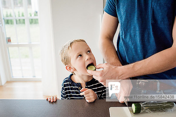father making his kids packed lunch whilst feeding his son for school