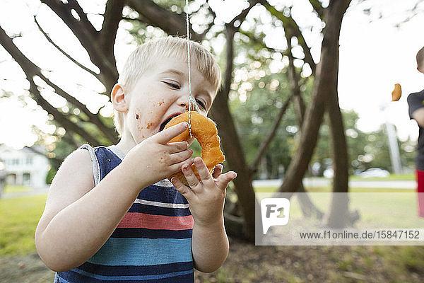 Kleinkind hilft ihm mit den Händen  am Ast hängenden Donut zu essen