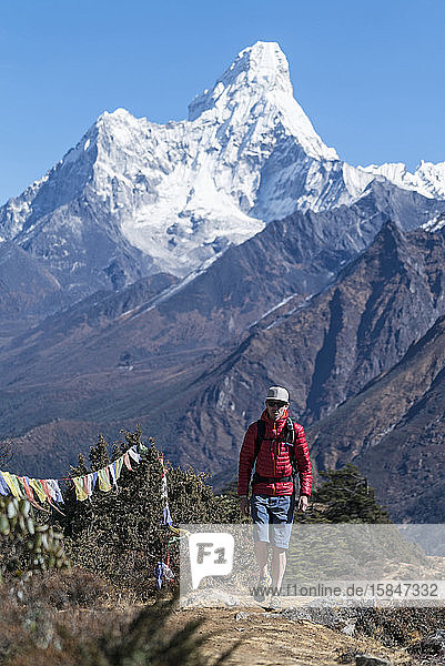 Mann wandert auf der Ama Dablam-Expedition  Khumbu  Nepal