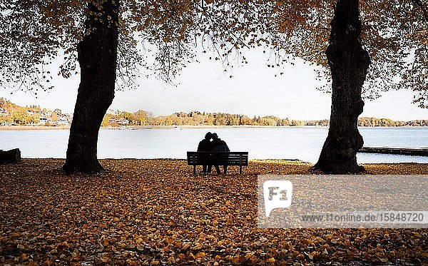 Couple sitting on a bench surrounded by fall leaves enjoying scenery