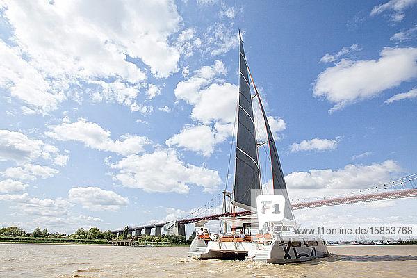 A catamaran cruising on the Garonne river  Bordeaux  Gironde  France.