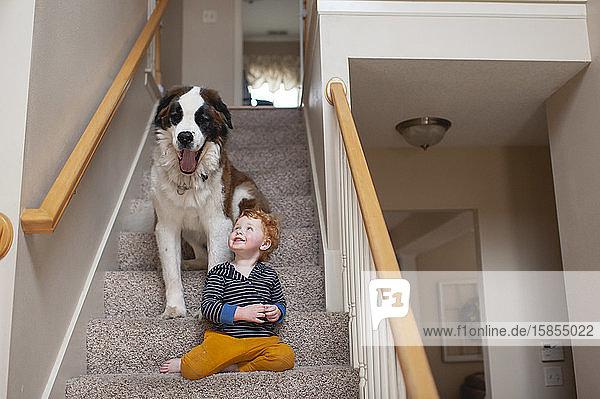 Junge im Alter von 2 bis 3 Jahren auf Stufen sitzend mit großem Hund  der zu Hause gähnt
