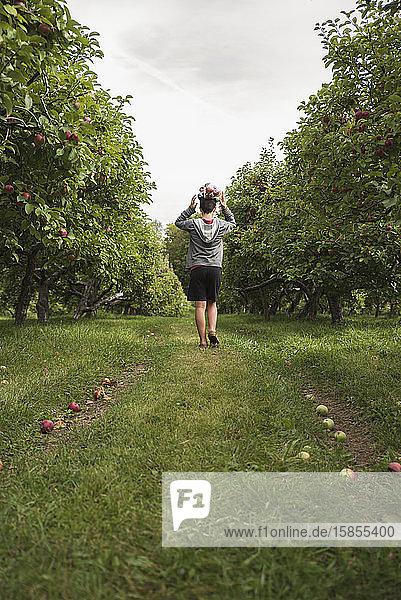 Teenager  der in einem Apfelgarten einen Sack Äpfel auf dem Kopf balanciert.
