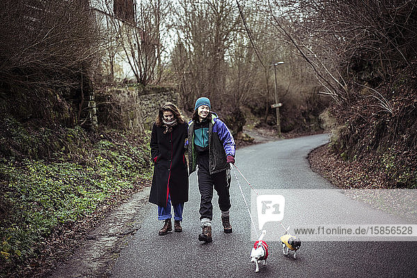 Gay female couple laugh and walk dogs up country road in czech winter