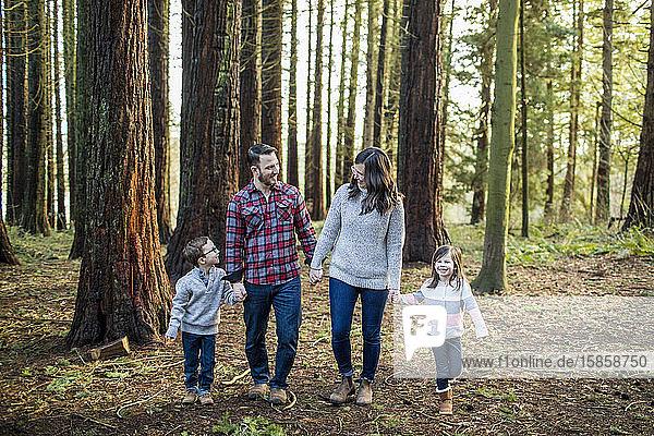 Liebende vierköpfige Familie  die die gemeinsame Zeit im Freien genießt.