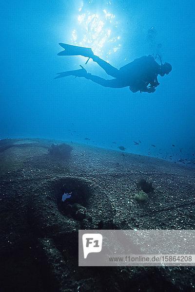 A diver swims of a ship wreck on Isle Saint Marie  Madagascar.