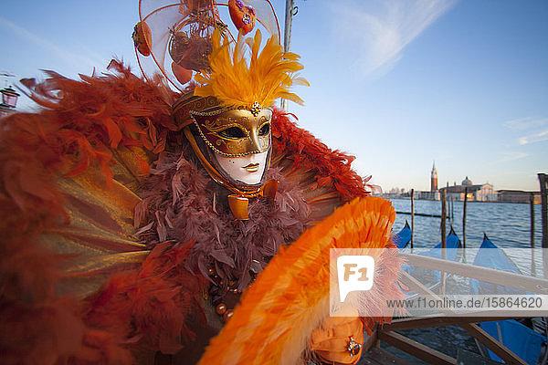 Venice Carnival  Venice  Veneto  Italy  Europe