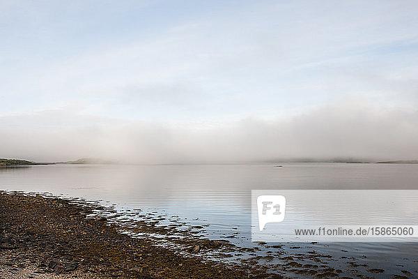 Loch Fyne  Scotland  United Kingdom  Europe