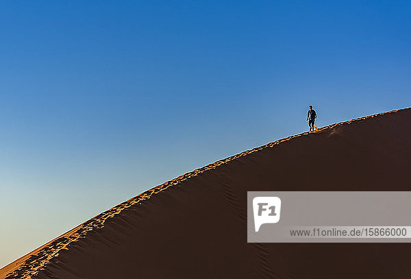 Tourists descending Dune 45  Sossusvlei  Namib Desert; Namibia