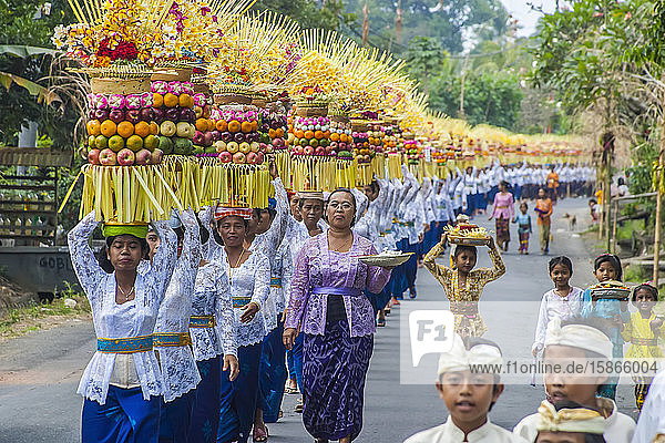 Procession of traditionally dressed women carrying temple offerings or gebogans on their head on the island Bali; Bali  Indonesia
