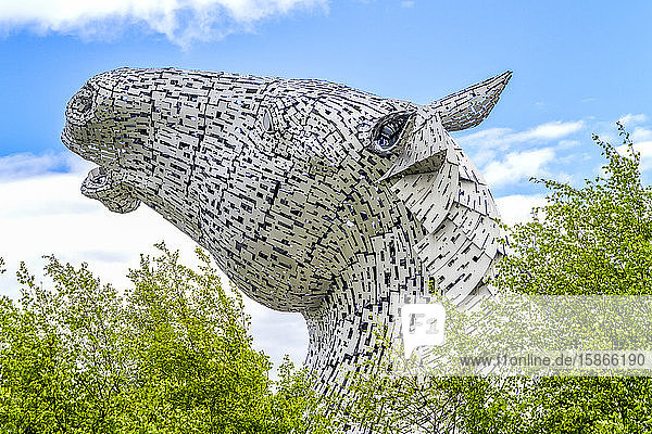 The Kelpies; Falkirk  Forth Valley  Scotland