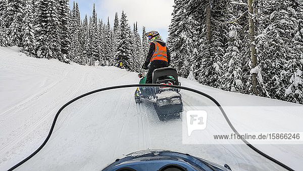 Snowmobile goes down a trail through a forest in winter; Sun Peaks  British Columbia  Canada