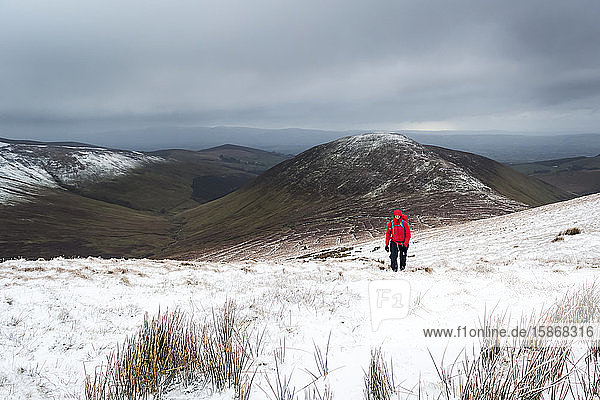 Lone woman hiker in red jacket trekking up a snow-covered mountain in winter on a cloudy day  Galty Mountains; County Tipperary  Ireland