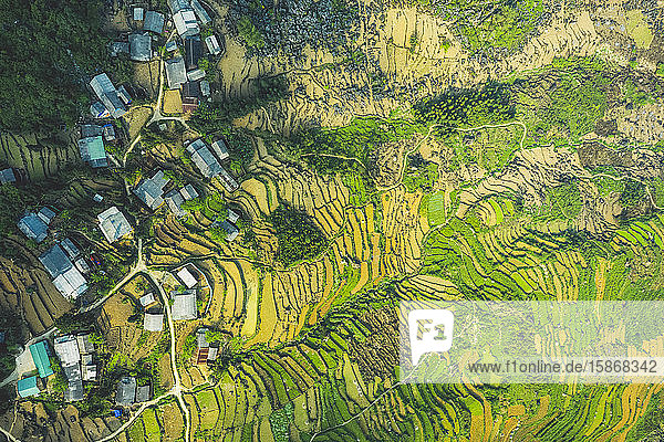 Drone view of rice terraces; Ha Giang Province  Vietnam