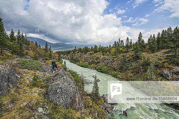 A woman stands overlooking the Tutshi River near the Yukon/British Columbia border; Yukon  Canada
