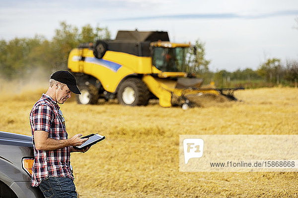 A farmer making a call and using his tablet to help manage the wheat harvest while a combine is working in the background: Alcomdale  Alberta  Canada
