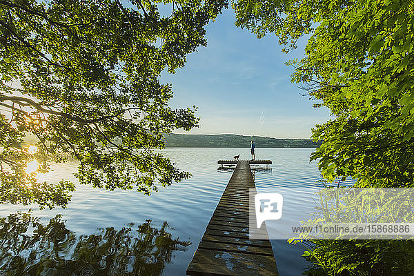 Man and dog on a dock looking at a lake at sunrise in spring; Killaloe  County Clare  Ireland
