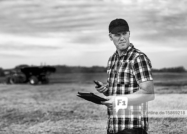 A farmer using his tablet to help manage the wheat harvest while a grain buggy is working in the background: Alcomdale  Alberta  Canada