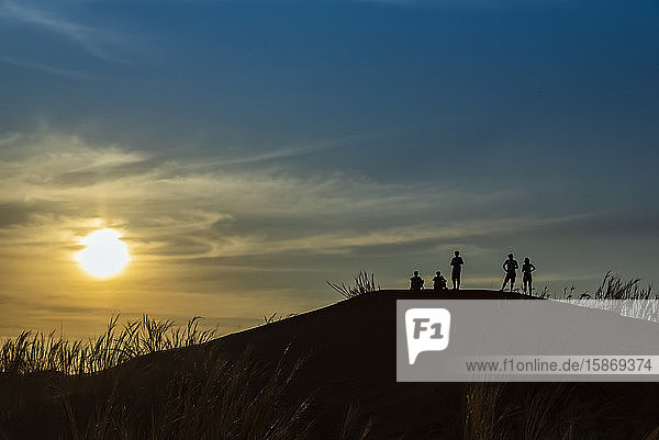Silhouetted group of tourists stand looking out at the top of a sand dune  Elim dune  Namib Desert; Sesriem  Namibia