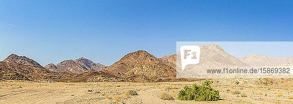 Landscape surrounding Brandberg Mountain  Damaraland; Kunene Region  Namibia
