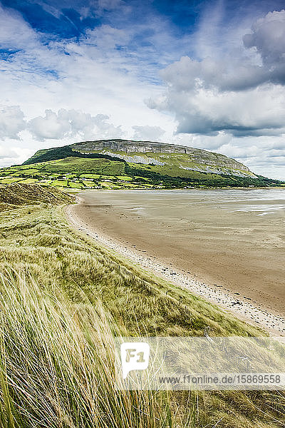 Irish coastline with beach grass and receded tide  with a plateau mountain and cliffs in the background during summer; Strandhill  County Sligo  Ireland