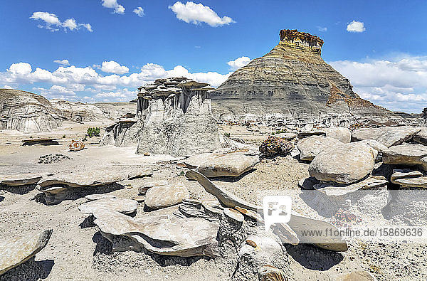 Unique rock formations  Bisti Badlands  Bisti/De-Na-Zin Wilderness  San Juan County; New Mexico  United States of America