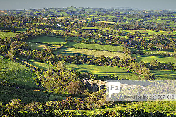Viaduct forming part of the Granite Way surrounded by rolling Dartmoor countryside  Devon  England  United Kingdom  Europe