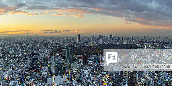 View of Shinjuku skyline and downtown at sunset  Tokyo  Honshu  Japan  Asia