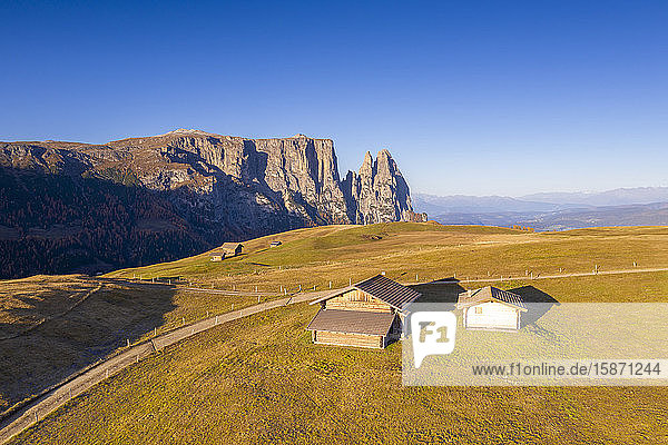 Aerial view by drone of sunrise on Alpe di Siusi (Seiser Alm) and Sciliar peaks in autumn  Dolomites  South Tyrol  Italy  Europe