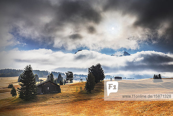 The plateau of Seiser Alm during autumn  Seiser Alm  Dolomites  province of Bolzano  South Tirol  Italy  Europe