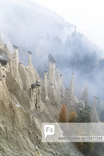Colorful trees on rocks of the Earth Pyramids in autumn  Perca (Percha)  province of Bolzano  South Tyrol  Italy  Europe