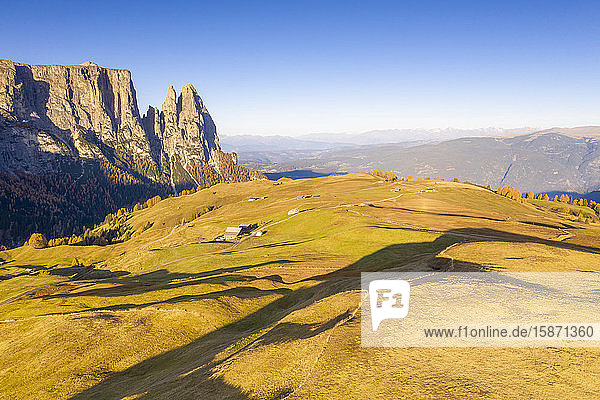 Aerial view by drone of autumn colors at Alpe di Siusi (Seiser Alm) and Sciliar peaks lit by sunrise  Dolomites  South Tyrol  Italy  Europe