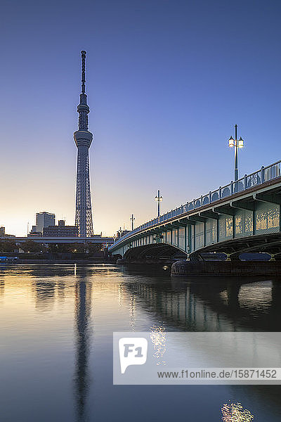 Skytree and Sumida River at dawn  Tokyo  Honshu  Japan  Asia