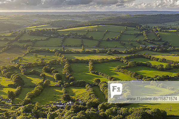 Aerial view by drone of rolling countryside in evening light  Devon  England  United Kingdom  Europe