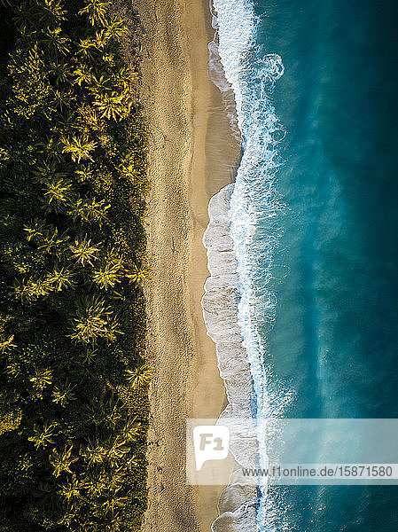 Aerial view by drone of Playa los Angeles  Magdalena Department  Caribbean  Colombia  South America