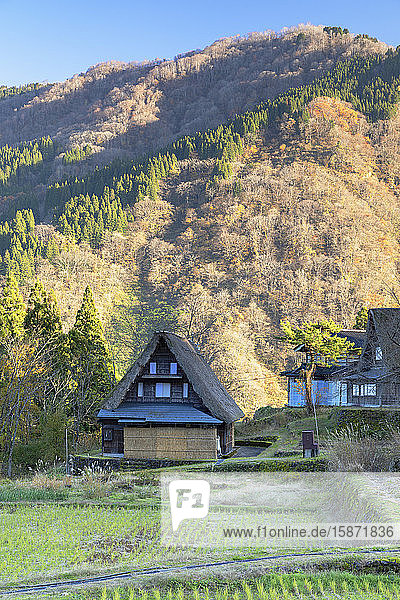 Traditional houses of Ainokura  UNESCO World Heritage Site  Gokayama  Toyama Prefecture  Honshu  Japan  Asia