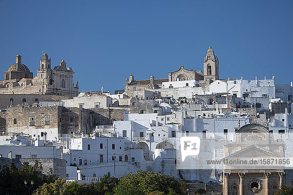 The medieval white city of Ostuni  Puglia  Italy  Europe