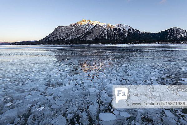 Methane gas bubbles at Lake Abraham  Kootenay Plains  Alberta  Canadian Rockies  Canada  North America