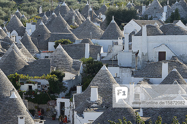 Conical dry stone roofs on trulli  traditonal houses in Alberobello  UNESCO World Heritage Site  Bari Province  Puglia  Italy  Europe