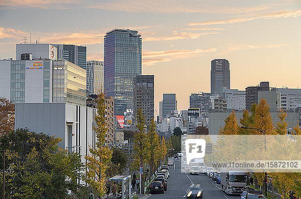 Skyline of Shibuya at sunset  Tokyo  Honshu  Japan  Asia