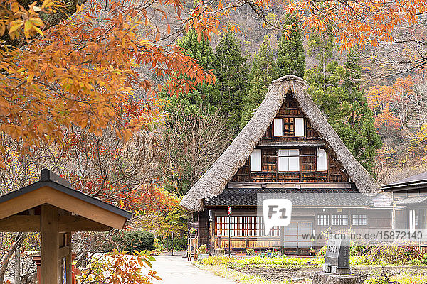 Traditional house of Suganuma  UNESCO World Heritage Site  Gokayama  Toyama Prefecture  Honshu  Japan  Asia