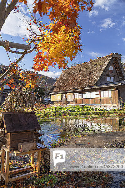Traditional house of Ogimachi  UNESCO World Heritage Site  Shirakawa-go  Toyama Prefecture  Honshu  Japan  Asia