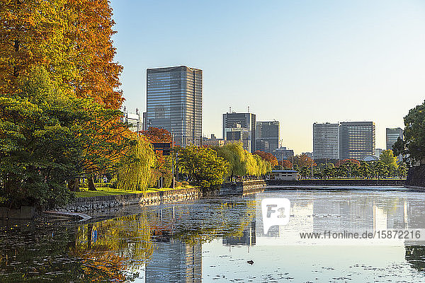 Skyscrapers of Marunouchi and moat of Imperial Palace  Tokyo  Honshu  Japan  Asia